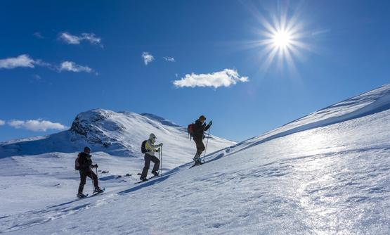 7-day Snowshoeing and Dogsledding Adventure in Norway